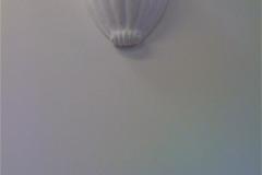 Plaster Shell Light